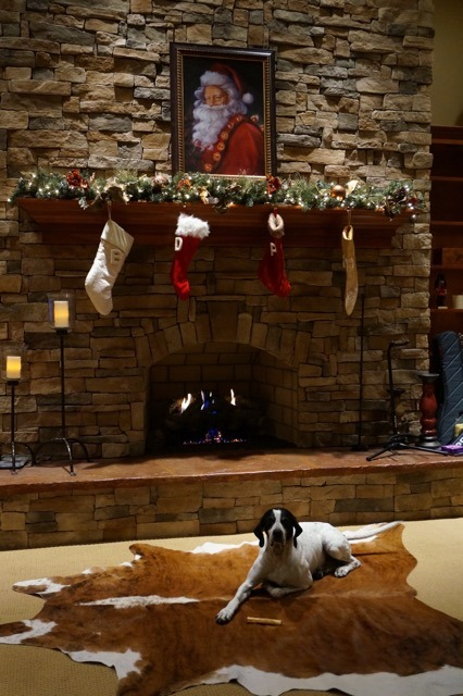 Cowhide rug at Christmas