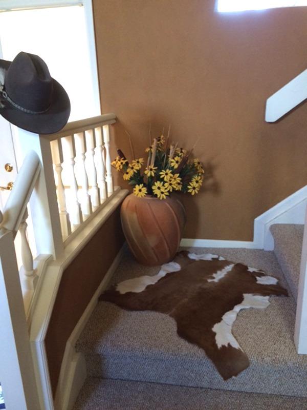 Cowhide rug on stairs