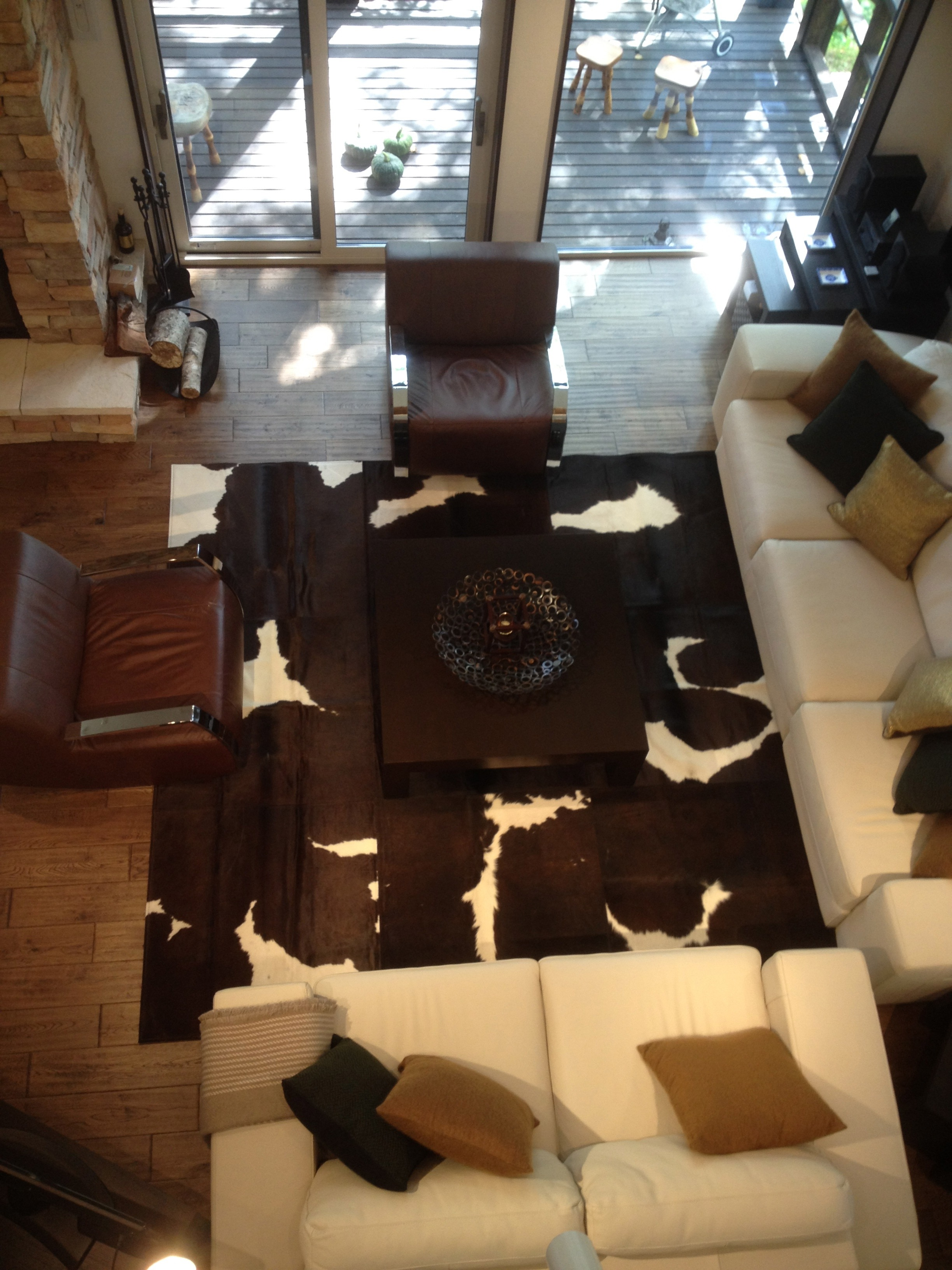 Cowhide rug from above