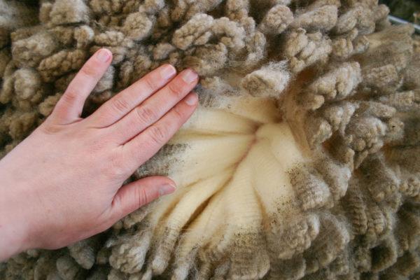 animal hide rugs