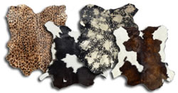 Other Animal Hides